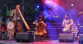 Muzyka folkowa na zakończenie Dni Historii Płocka [ZDJĘCIA]