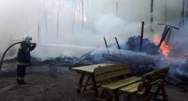 Pożar w Duninowie Dużym. Ogień sięgnął lasu