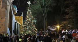Jarmarki świąteczne przy Płockich Ogrodach Światła - pierniki, gorąca herbata i wiele innych