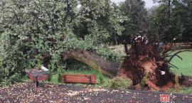 Tornado nad Edwardowem