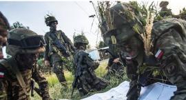 Terytorialsi będą ćwiczyć w powiecie kraśnickim