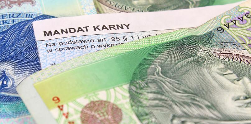 Kronika Kryminalna - Policja, zapłacić swoje przewinienia - zdjęcie, fotografia