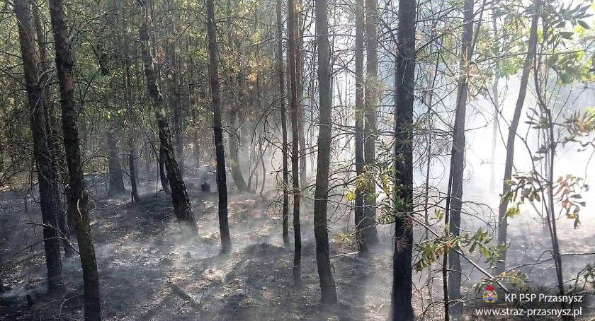 Pożary - Straż , Pożar Małowidzu Spaleniu uległo - zdjęcie, fotografia