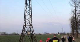 Upadek nastolatka ze słupa energetycznego w Przasnyszu
