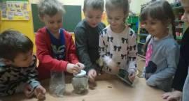 Góra grosza w Krzynowłodze. Zobacz ile uzbierały przedszkolaki