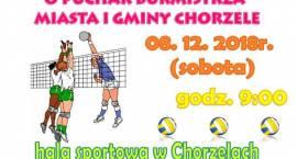 Turnieju Piłki Siatkowej o Puchar Burmistrza Miasta i Gminy Chorzele - zaproszenie