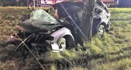 Wypadek samochodu osobowego w miejscowości Plewnik