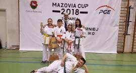 Karatecy z Krasnego i Ciechanowa wysoko na podium w PIASECZYŃSKIM TURNIEJ KARATE KYOKUSHIN IKO