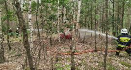 Pożar lasu na dużym obszarze leśnym, scenariuszem wtorkowych ćwiczeń
