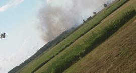 Duży Pożar Lasu w gminie Chorzele ugaszony. 26 zastępów Straży Pożarnej brało udział akcji [Zdjęcia]