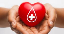 Pilnie potrzebna krew dla Aleksandry chorej na białaczkę