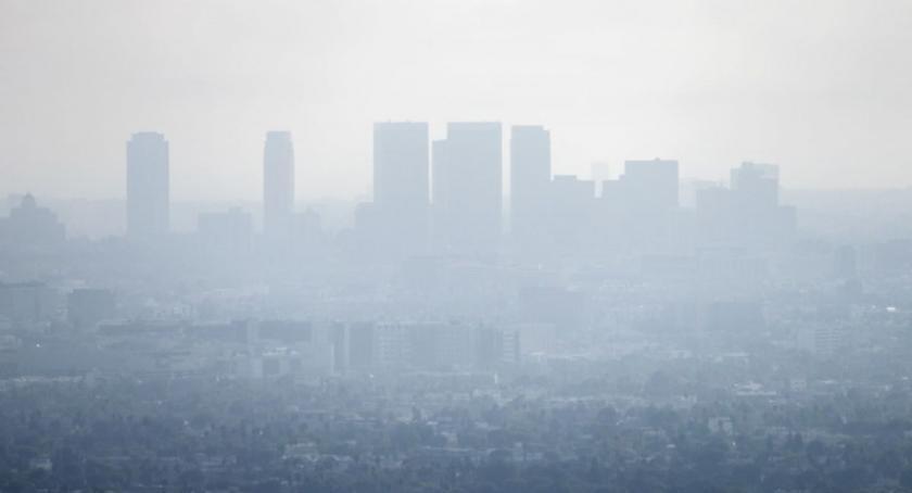 Ochrona środowiska i ekologia, Domowy oczyszczacz powietrza walczy smogiem jeszcze - zdjęcie, fotografia