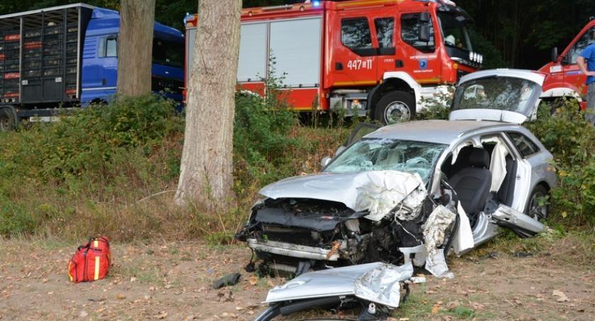 Wypadki, Ręboszewo rozbiło drzewie akcji - zdjęcie, fotografia
