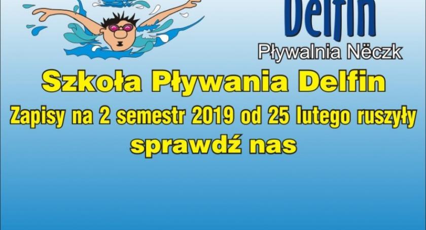 Artykuł sponsorowany, Szkoła Pływania Delfin zaprasza ruszyły zapisy naukę doskonalenie pływania semestrze lutego - zdjęcie, fotografia