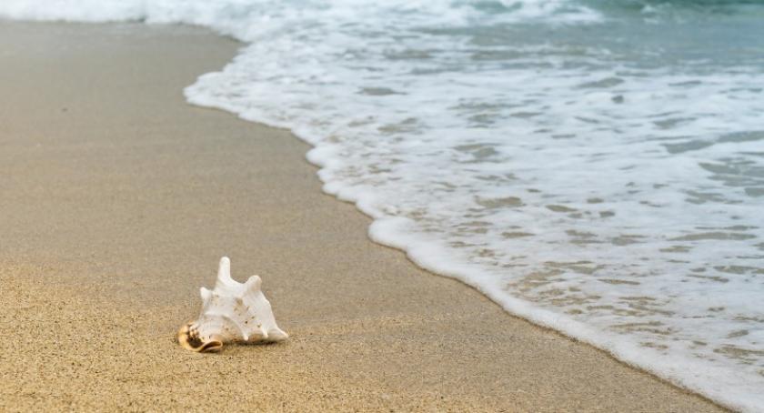 Turystyka, porady osób które chcą jechać wakacje minute - zdjęcie, fotografia