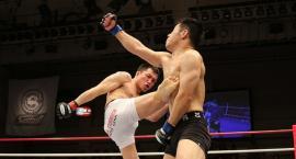 Coraz popularniejsze Fame MMA