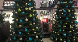 Boże Narodzenie w listopadzie? O komercjalizacji świąt wypowiedzieli się Kaszubi