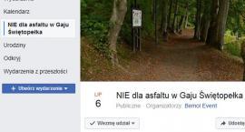 Kartuzy. Burmistrz spotka się z mieszkańcami w sprawie budowy ścieżki w Gaju Świętopełka