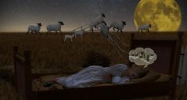 Insomnia znaczy: bezsenność
