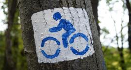 Jeszcze w tym roku Ostrzyce i Somonino połączy ścieżka rowerowa