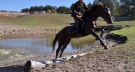 Tak Hubertusa spędzono w stadninie koni w Kolanie