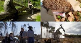 Kaszëbskô Prziroda - reportaż o kaszubskiej naturze - zobacz zwiastun