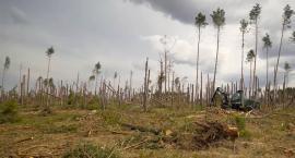 Kaszëbskô Prziroda - reportaż o kaszubskiej naturze
