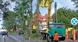 Drzewo przygniotło samochód. Tragiczne żniwo wypadków