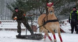 Powozili na śniegu, czyli Kaszëbskô Szlópa po raz XI