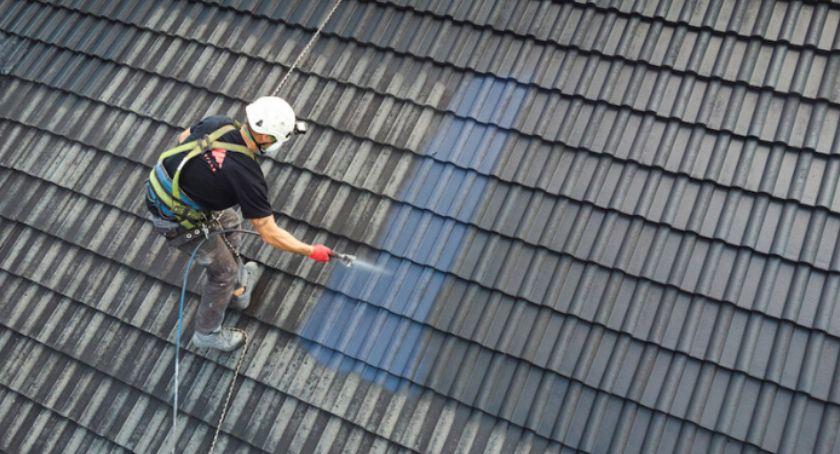 Biznes i finanse, Malowanie dachu agregatem malarskim - zdjęcie, fotografia