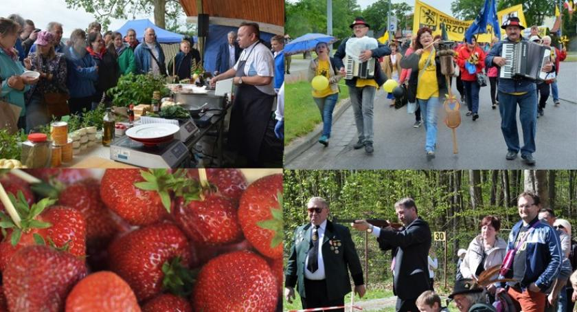 Zapowiedzi, Weekend Kaszubami truskawkami festiwalem kiszewskich smaków - zdjęcie, fotografia