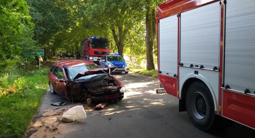 Wypadki, Grabowska Romeo rozbiła drzewie - zdjęcie, fotografia