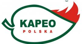 Firma KAPEO poszukuje nowych pracowników - atrakcyjne wynagrodzenie