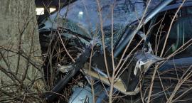Iłownica. Citroen uderzył w drzewo - nie żyje półroczne dziecko