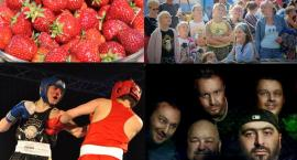 Weekend z festynami, Truskawkobraniem i Galą Champion's Fight Night