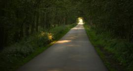Niebawem rozbudowa drogi Lubań - Nowy Barkoczyn