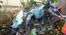 Lubieszyn. Wyprzedzał inne pojazdy, zatrzymał się na drzewie - nie żyje 29-latek