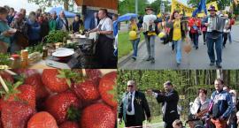 Weekend z Kaszubami, truskawkami i festiwalem kiszewskich smaków