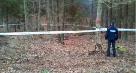 Policja potwierdza: Znaleźliśmy Kamilę