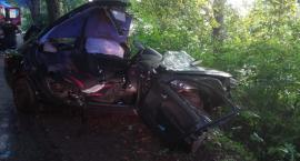 Połęczyno. Ford rozbił się na drzewie - nie żyje 63-latek