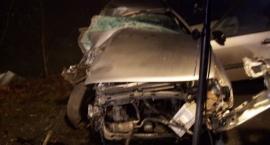 Nowa Karczma-Lubieszyn. Śmiertelny wypadek ( nowe zdjęcia). Nie zyje 20-letni mężczyzna