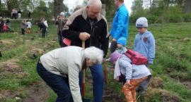 Mieszkańcy Lipusza sadzili drzewka w Płocicznie. Parafialno-Gminny Spacer Rodzinny