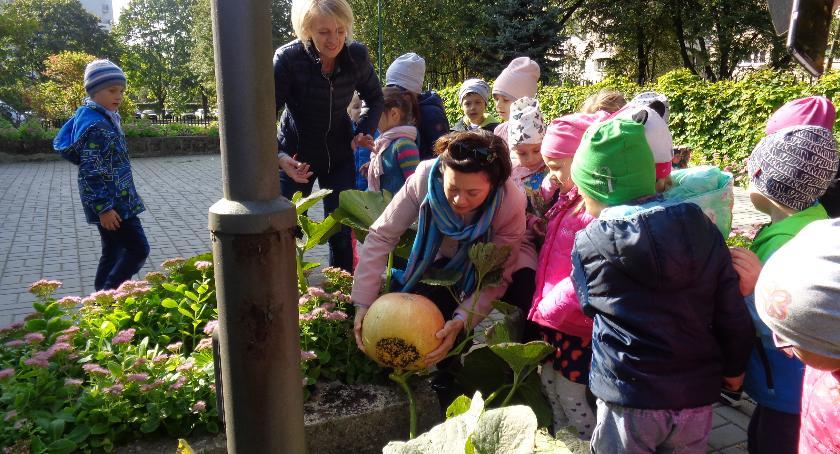 opieka nad dzieckiem, Jesień przedszkolu - zdjęcie, fotografia