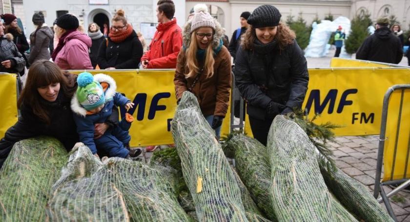 Gospodarka odpadami, Oddaj odpady odbierz choinkę wspomóż seniorów! - zdjęcie, fotografia