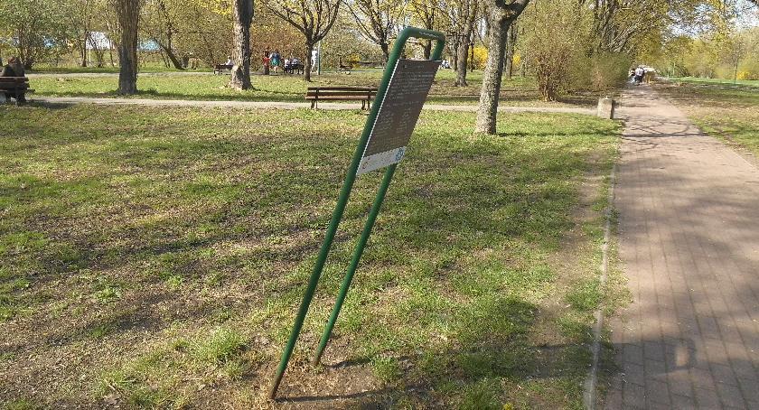 zieleń, Kwietna łąka chyli upadkowi - zdjęcie, fotografia