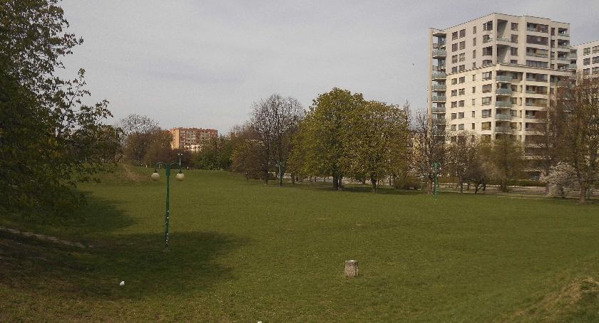 zieleń, Korotyńskiego potencjał - zdjęcie, fotografia