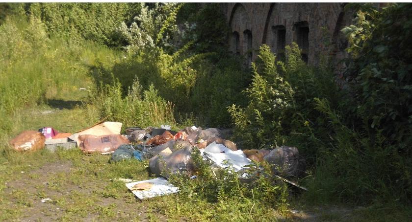 Gospodarka odpadami, Szczęśliwice darmowym wysypiskiem śmieci - zdjęcie, fotografia