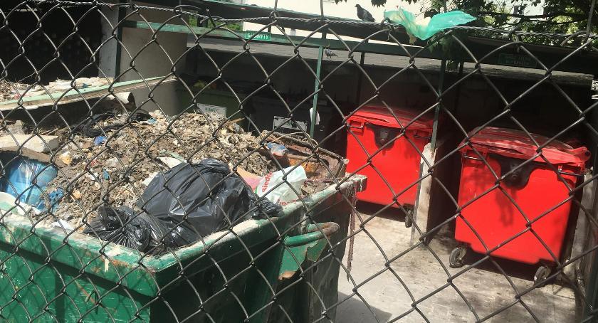 Gospodarka odpadami, Pańskie konia tuczy - zdjęcie, fotografia