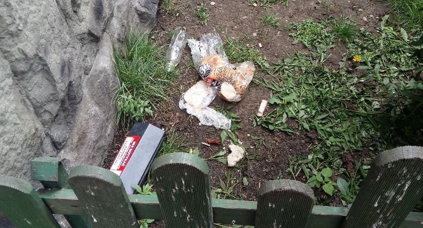 Gospodarka odpadami, dokarmiajmy szczurów - zdjęcie, fotografia
