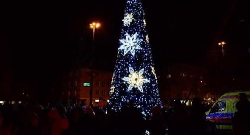 imprezy plenerowe, Choinka Placu Narutowicza zabłyśnie grudnia - zdjęcie, fotografia
